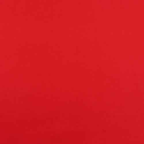 French terry bouclettes rouge (1.1€/10cm)