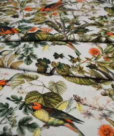 Jersey de coton blanc imprimé oiseaux (8€/50cm)