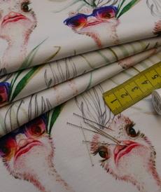Jersey de coton imprimé Autruches Stenzo