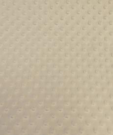 Minky à pois ecru ( 0.99€/10cm)